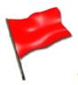 Флаг.Красный.Формула 1.Обозначение.Значение.Применение.Использование.