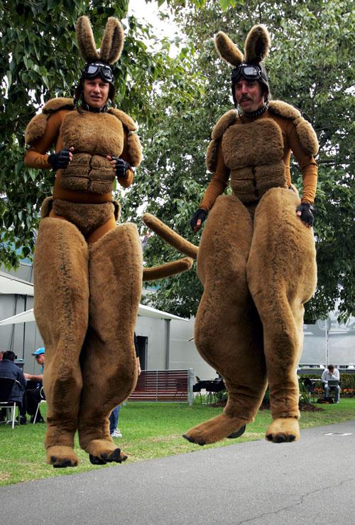 Люди кенгуру в паддоке Мельбурна